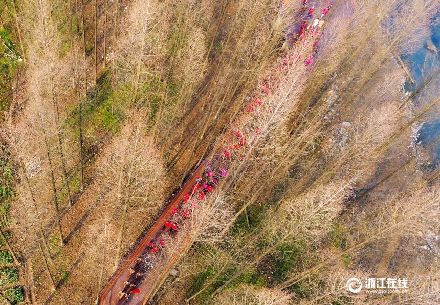 临安:行走绿道 拥抱春天