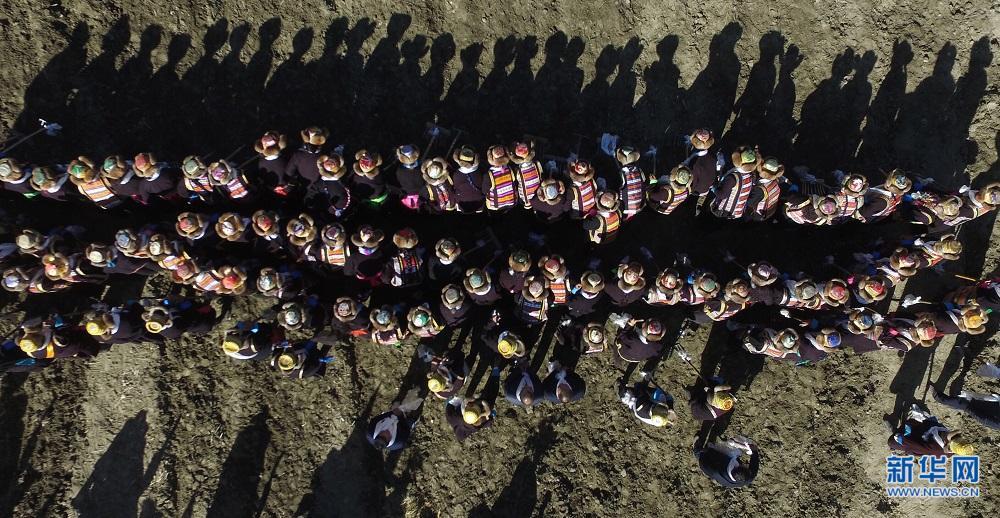 萌图看西藏第20期:高原春耕忙