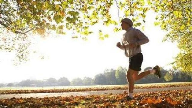 沈阳这几天不冷不热不算暖 宜走宜跑宜健身