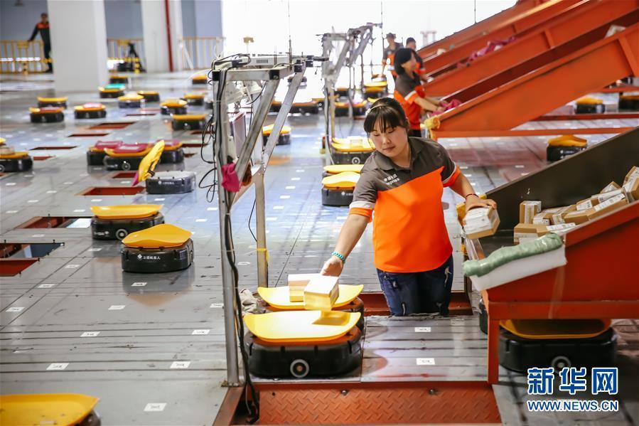 浙江义乌:快递机器人分拣包裹效率高