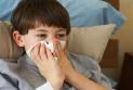 立夏警惕肺火起 養肺護肺五要點