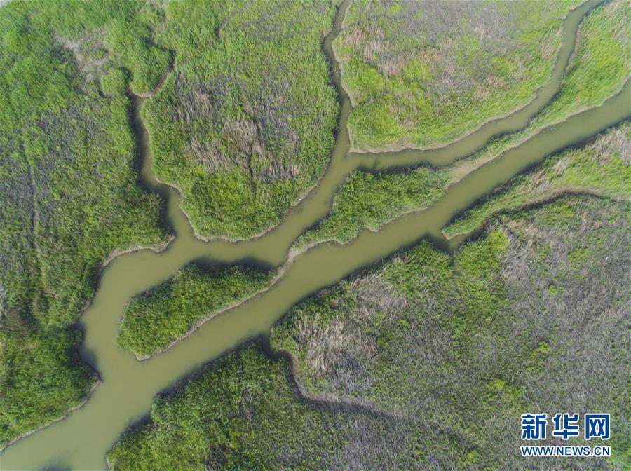 江苏如东:航拍沿海壮美滩涂