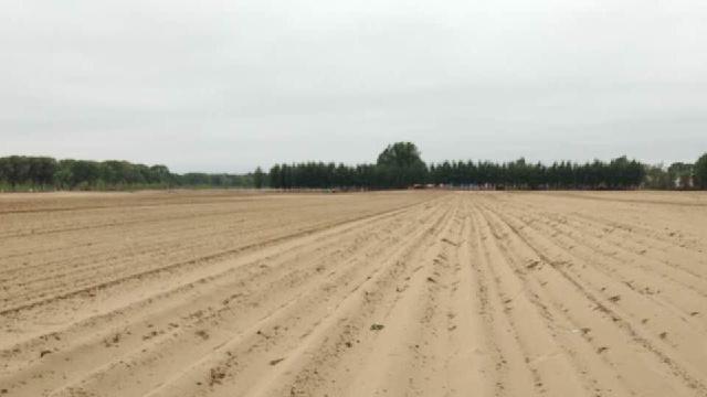 辽宁500余万亩农田受旱 累计60多万人投入抗旱