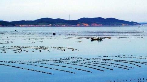 供给侧改革推进大连渔业发展优质高效