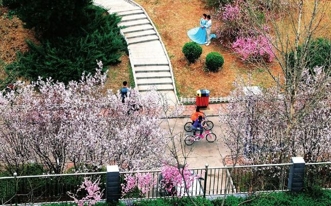 春色弥望 生态阳泉