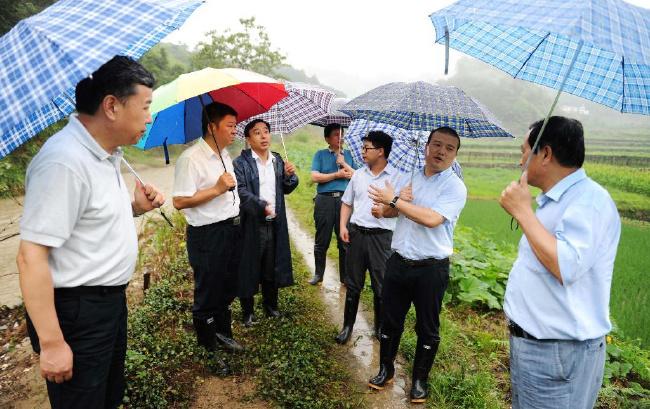 安徽省国土资源厅对新发现的重大地灾隐患点实施实时勘查