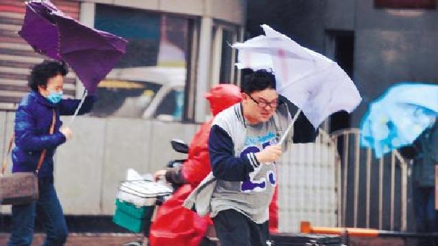 辽宁多地遭遇暴雨大风 且看暴雨中的众生相