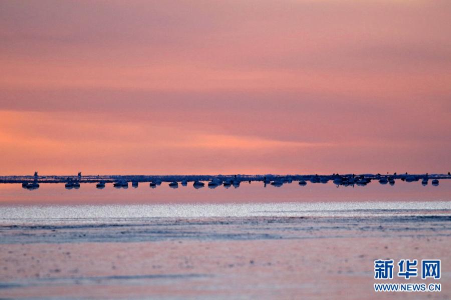 冬季青海湖:日出美如画 艳色脱尘俗