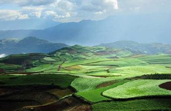 我国首次明确土壤污染治理与修复实行终身责任制