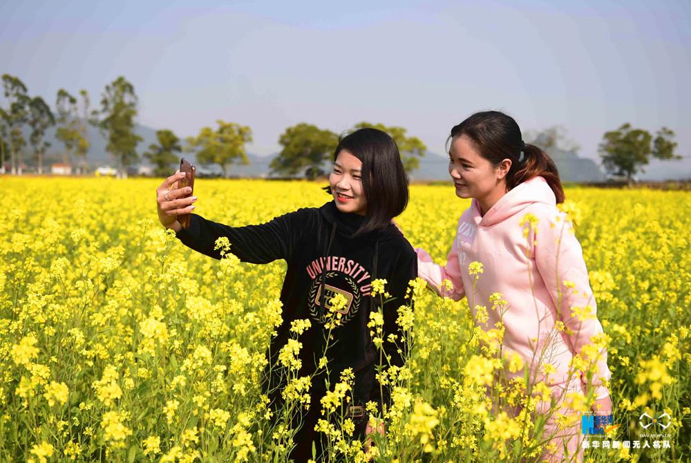 2月14日,游客在广西兴业县石南镇马塘村百八大垌村油菜花基地赏花拍照。新华网发 刘钦明摄