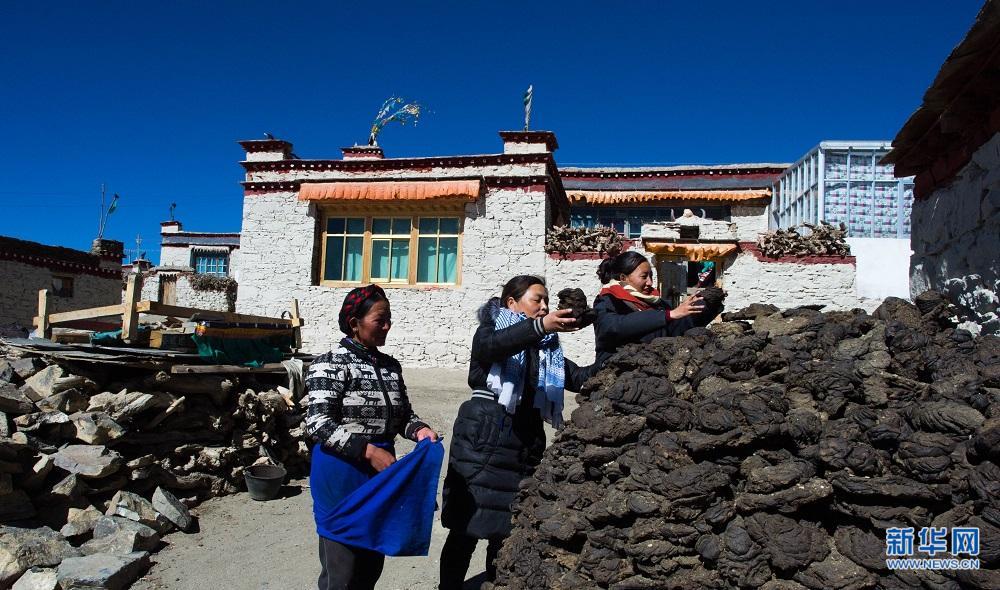 海拔5000米上的驻村干部