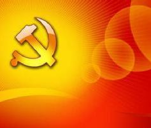纳杰:着力推动党内政治生活规范化常态化制度化