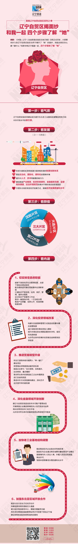 """辽宁自贸区揭面纱 四个步骤了解""""她"""""""
