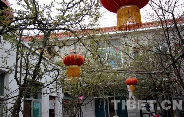 三族相敬 四世同心——西藏多民族家庭的幸福生活