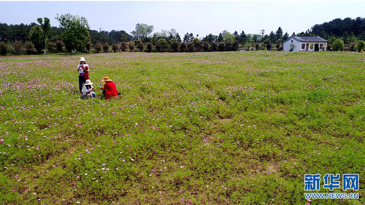 春日木兰草原 游客尽享异域风情