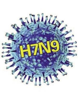 陕西派出2个督查组 开展H7N9疫情防控工作督导检查