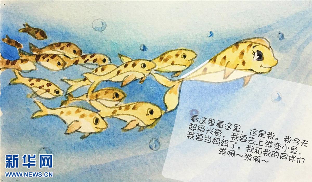 《青海湖最美的逆游》