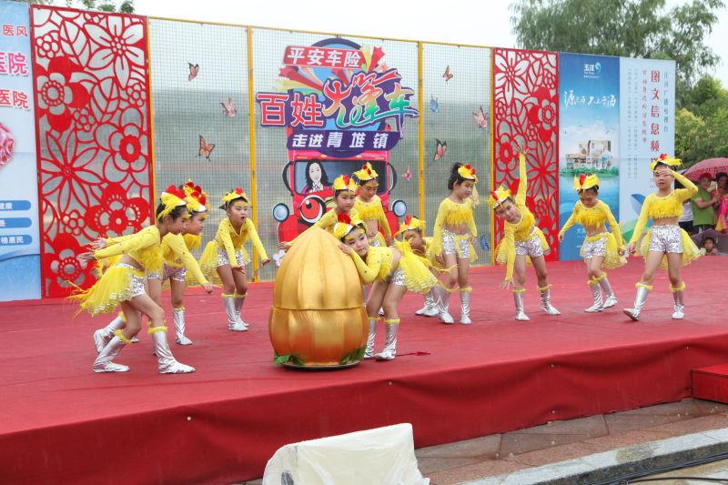 辽宁庄河:《百姓大篷车》搭建群众文化生活新舞台