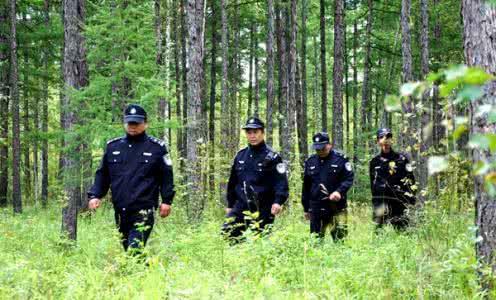 河南省13县市森林公安联手护青山