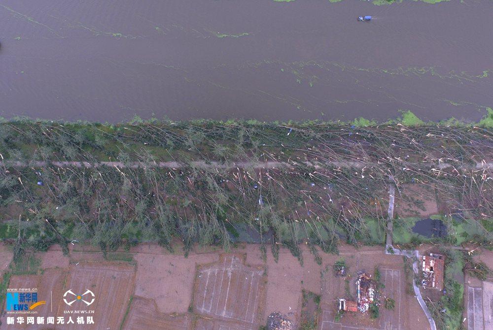 江苏盐城市龙卷风受灾现场航拍 现场一片狼藉