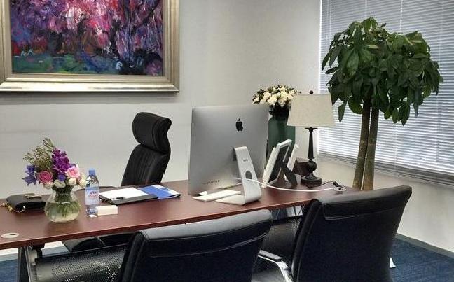 李湘新办公室照片曝光 霸道总裁范儿