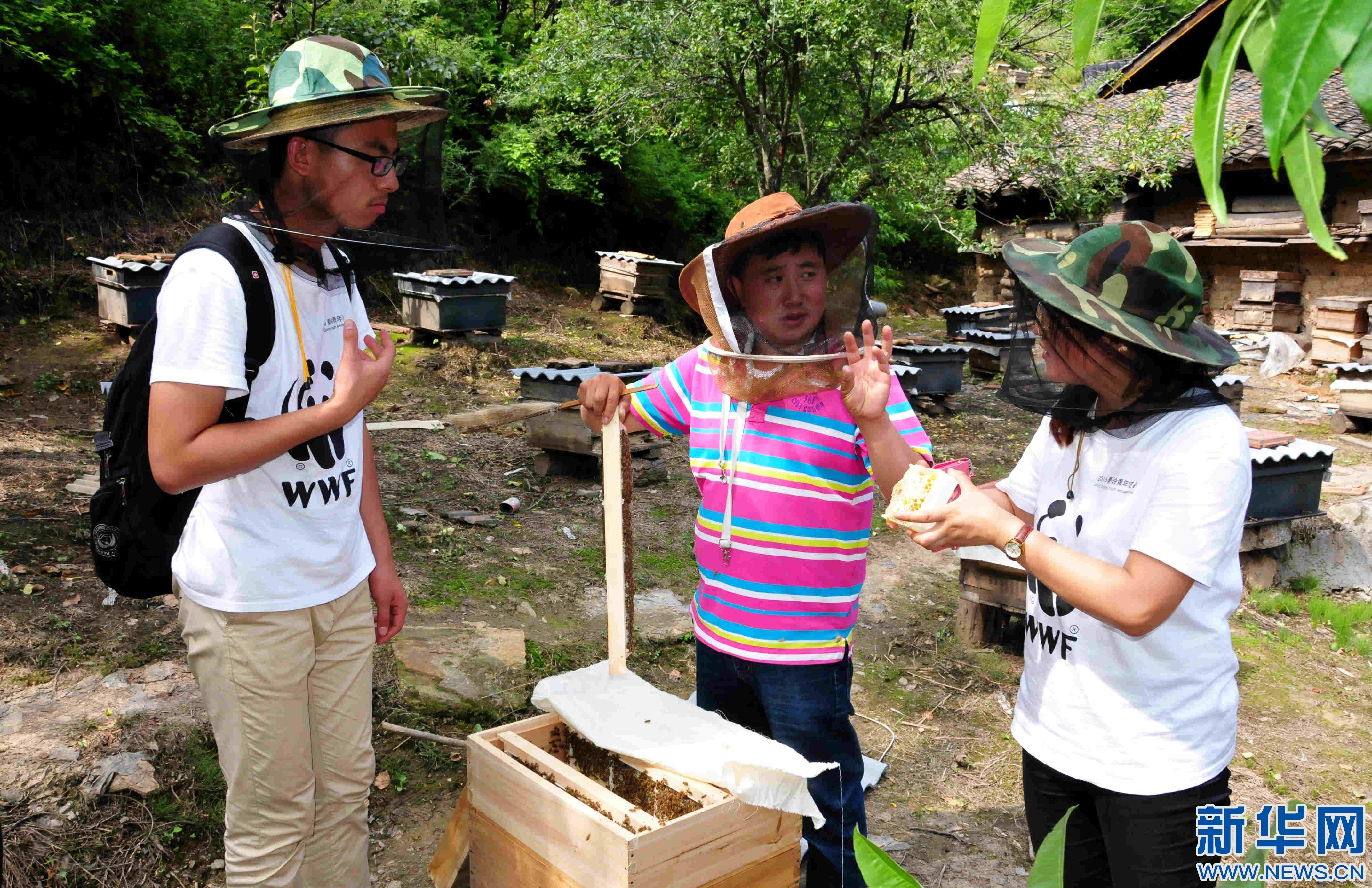 7月21日,西北农林科技大学生物工程学院师生在宁陕县向养蜂大户讲述网络营销方法。 今年暑期,西北农林科技大学暑期三下乡活动遴选350支社会实践服务团队、3900余名师生前往陕西、甘肃、山东等省的20多个地(市),开展科技支农、文化宣传、教育帮扶、环境保护等实践服务。  新华社记者梁爱平摄