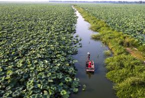 航拍:最美的滁州