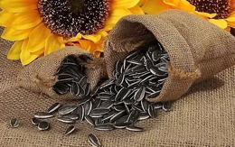 昆明市国家地理标志保护产品介绍——夕阳葵花籽