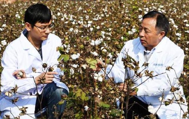 【新华融媒汇】王清连:农业科技永远不能落后于人