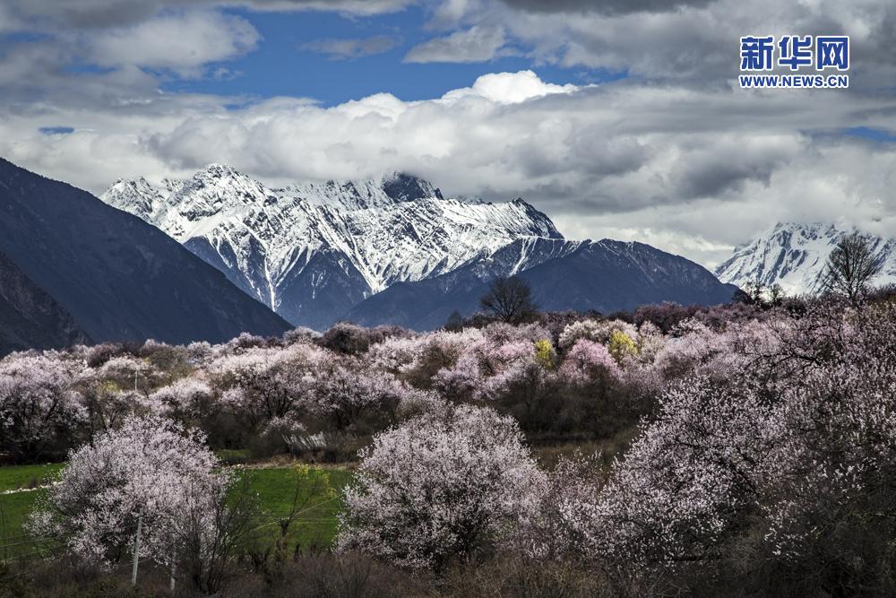 西藏摄影家【第18期】:阿旺仁青