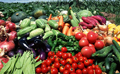 砚山县被命名为国家首批农产品质量安全县