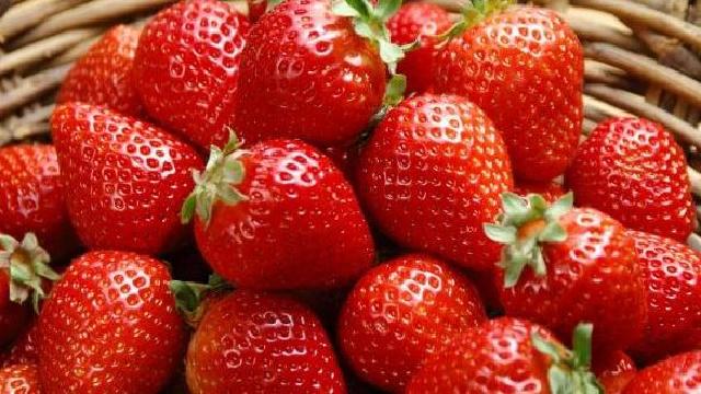 大连(金普新区)草莓文化旅游节启幕