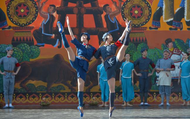 中央芭蕾舞团赴云南省武定县慰问演出
