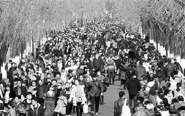 灵隐景区日游客人次首破10万