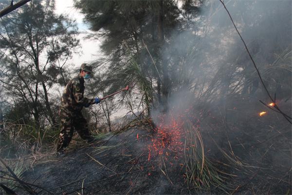 警民协作 扑灭山火