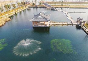 """村民有了好去处 安吉昔日""""废水湖""""变身湿地公园"""