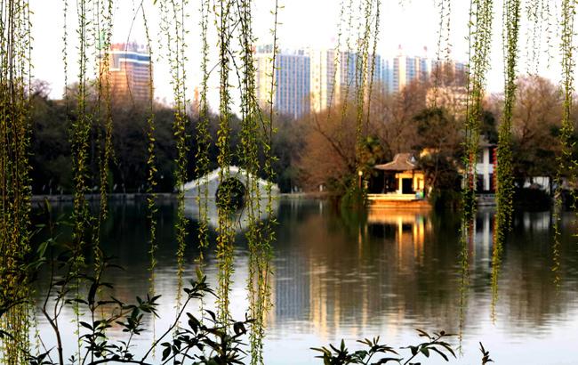 合肥包河初春景美如画