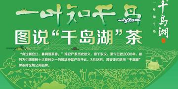 """一叶知千岛 图说""""千岛湖""""茶"""