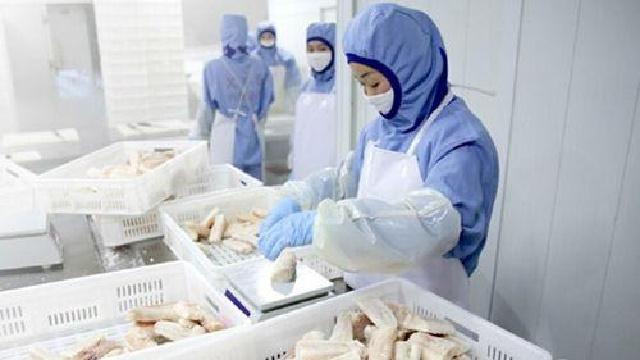 大连用科技创新拉动海洋食品产业健康发展