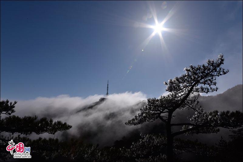 """""""世界地球日""""走进黄山 看亿万年前的神奇造化"""