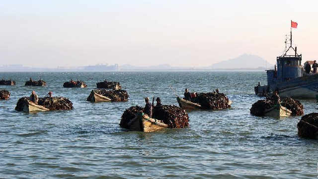 辽宁今年将创建超30个水产健康养殖示范场