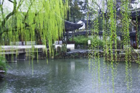 浣溪沙 春雨