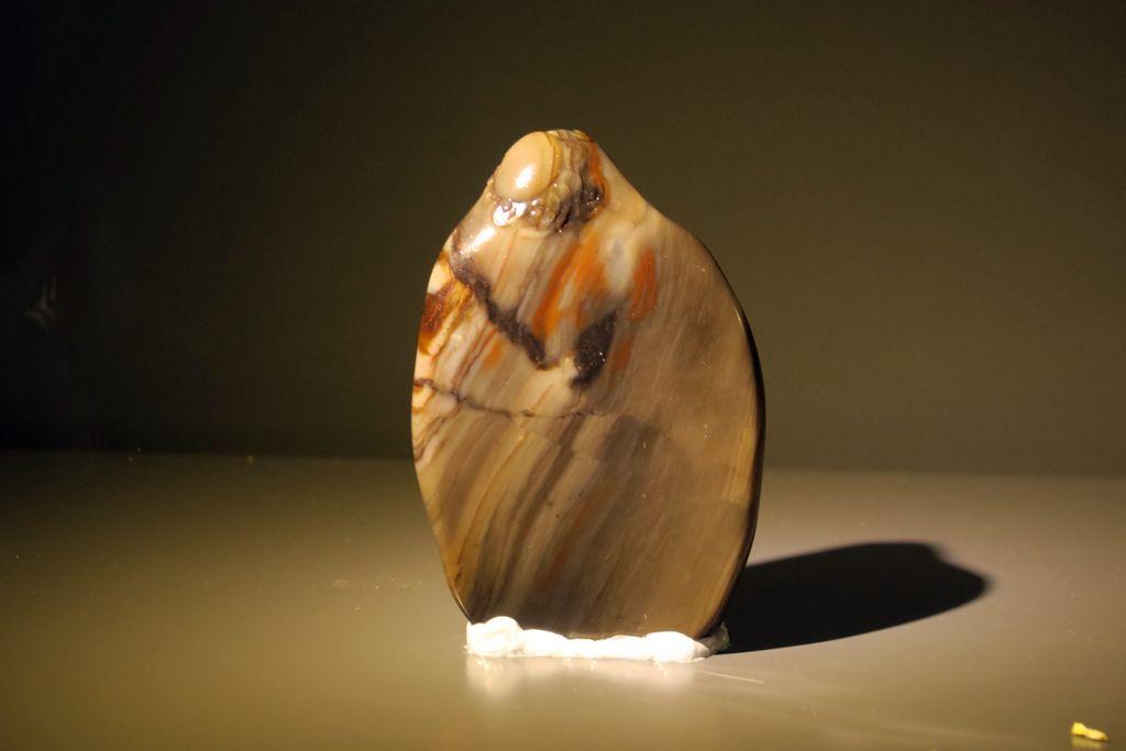 石之天成——寿山石雕刻展 - zcyyglzx - zcyyglzx的博客