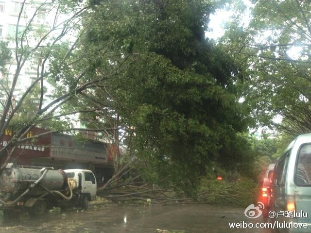 汕头台风天兔图片_