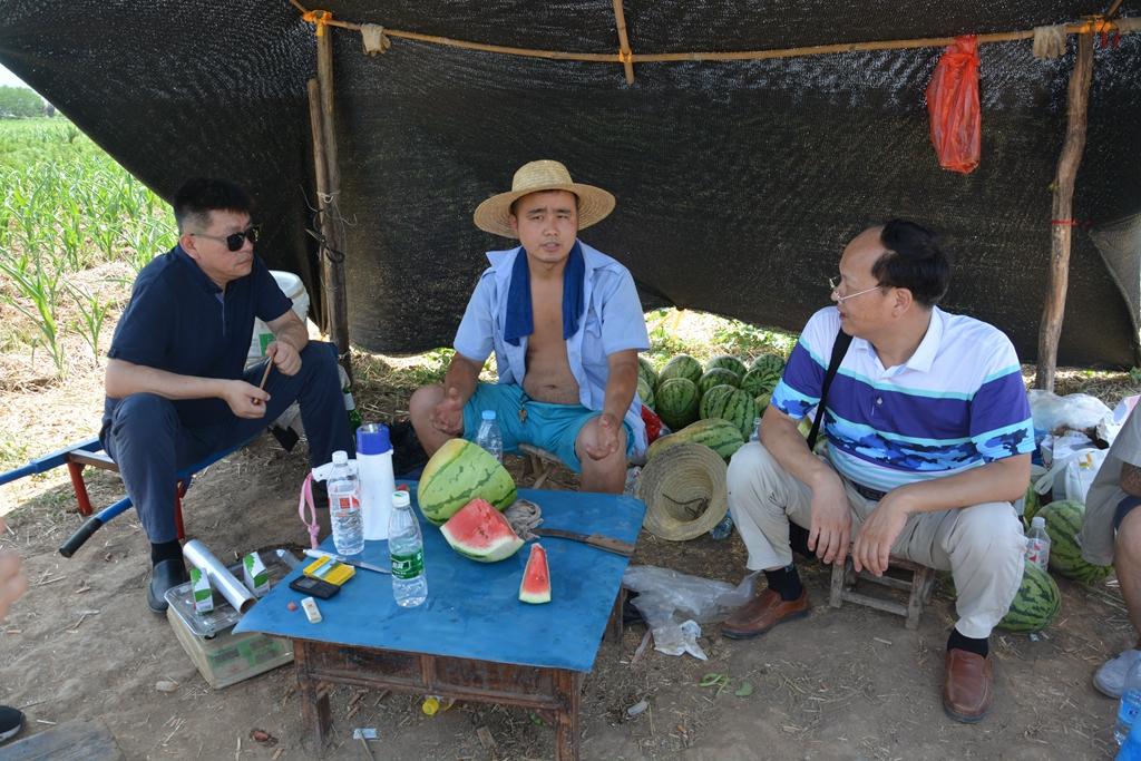 西工大附中老师为帮瓜农自费购买2000斤西瓜