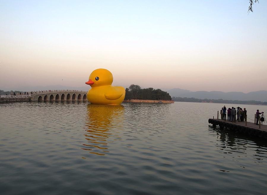 大黄鸭亮相颐和园昆明湖