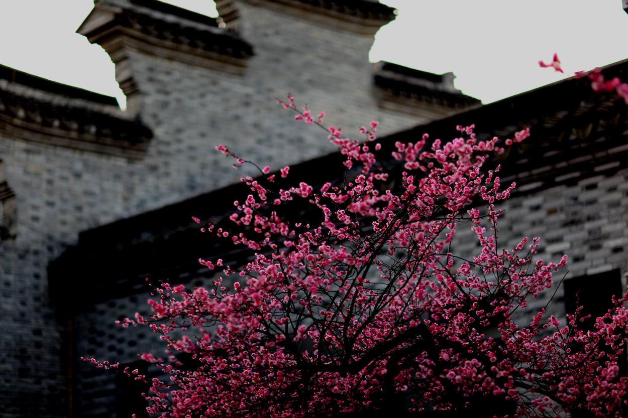 辞别冬日 喜迎春天