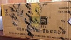 京东商城的包装箱,真坑爹!